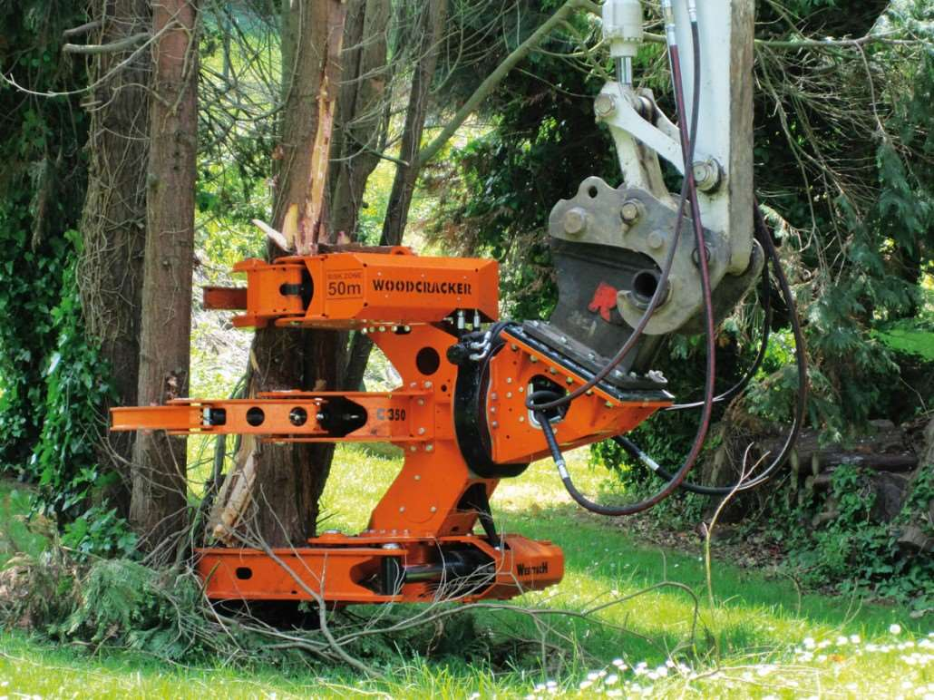 Woodcracker