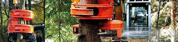 schluesselfaktor-woodcracker-cs