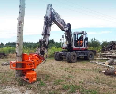 Woodcracker(R) CS580 smart in Polen